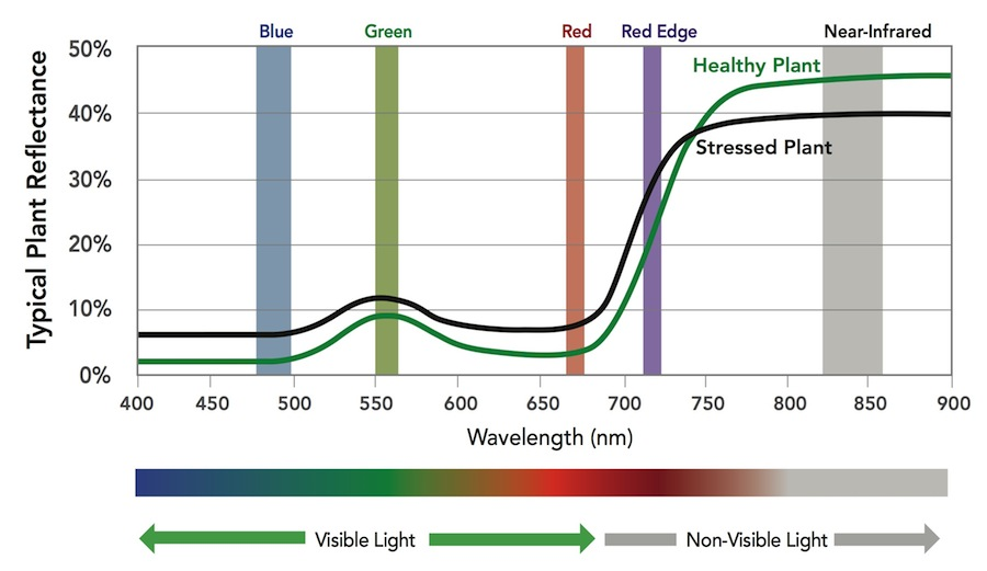 Image result for electromagnetic spectrum micasense rededge-m